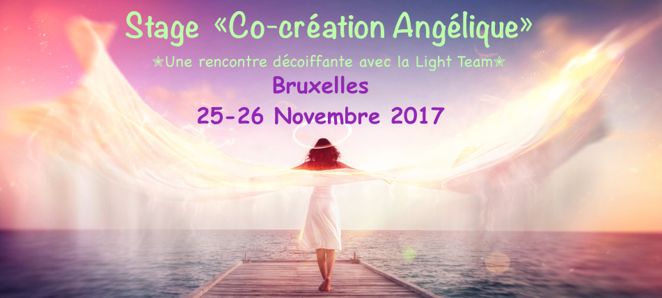 STAGE CO-CREATION ANGELIQUE- BRUXELLES: 25 & 26 Novembre 2017