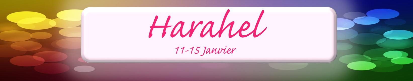 harahel-bandeau